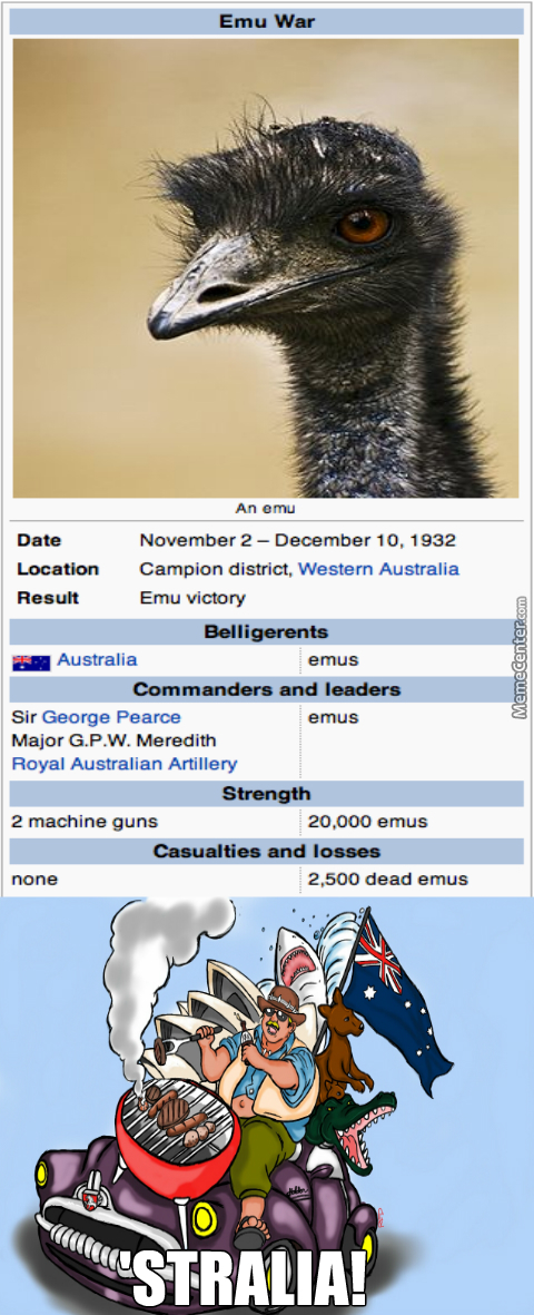 Old Man Emu >> The Emu War, Sums Up The Craziness Of Australia In A ...
