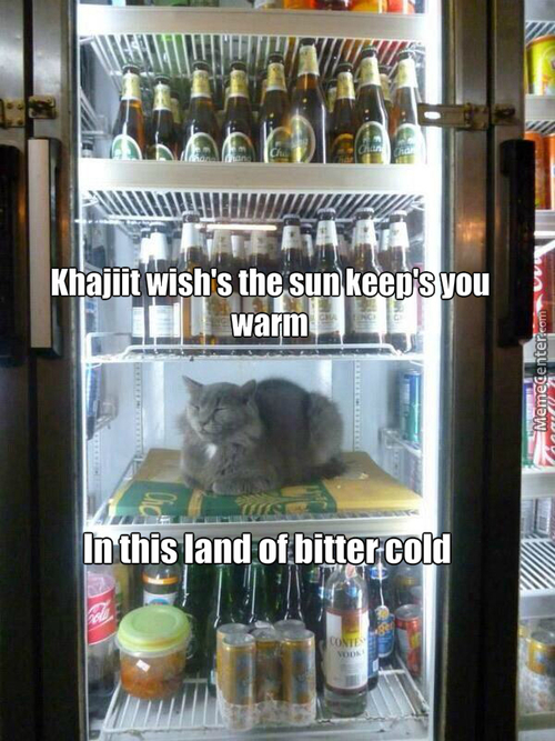 The Fridge Of Skyrim