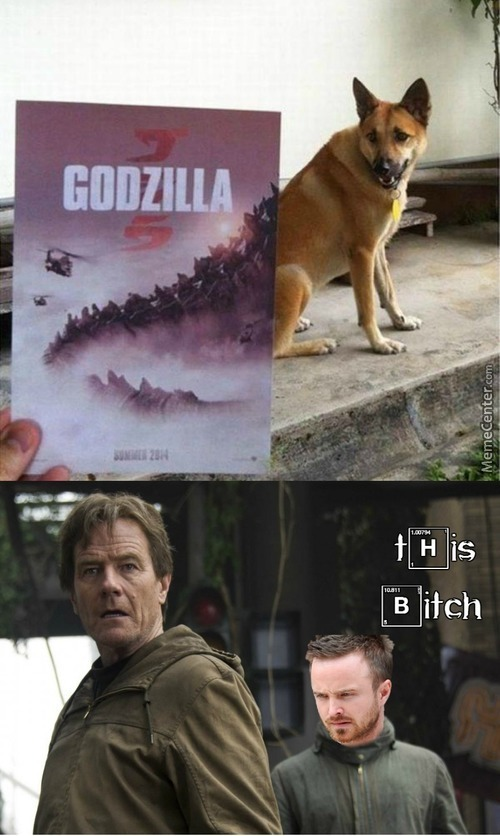 The Godzilla And The Bitch