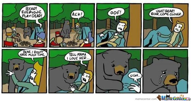 The Good Ol' Bear