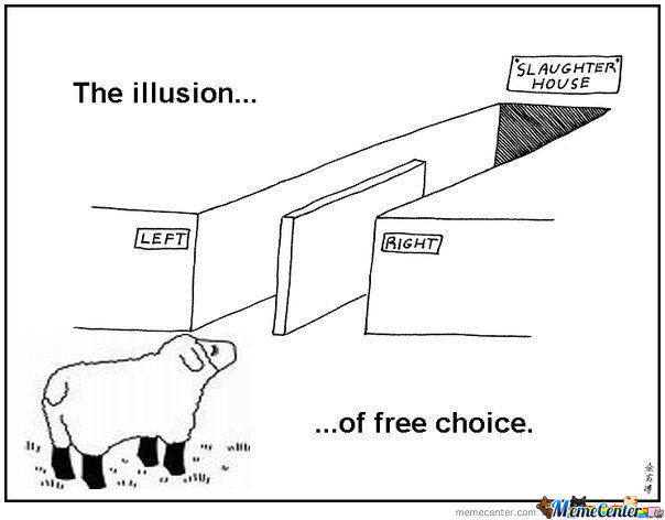 The Illusion Of A Free Choice ..