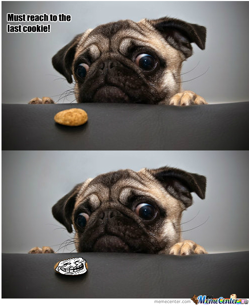The Last Cookie!