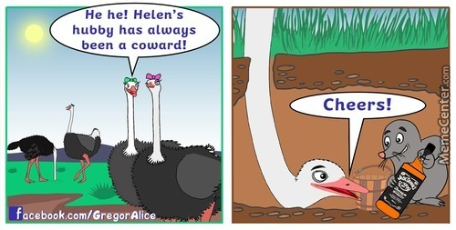 The Life Of Ostriches