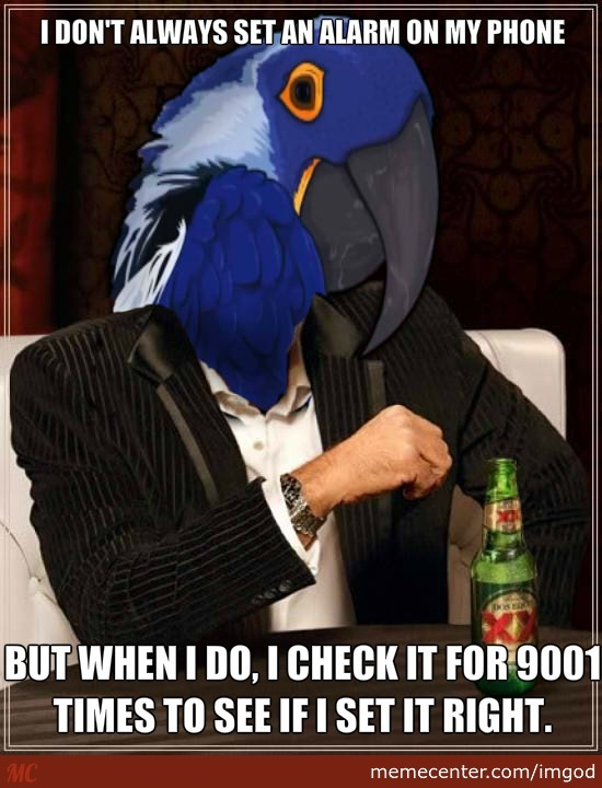 The Most Interesting Paranoid Parrot In The World.