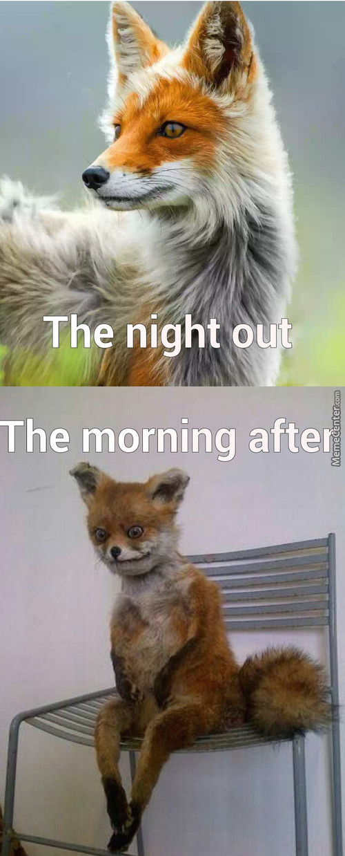 The Night Out Vs The Morning After