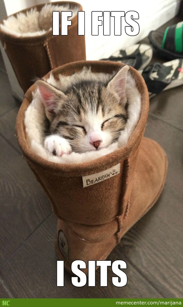 The Only Good Way To Use Uggs