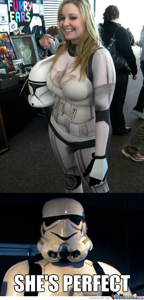 The Perfect Trooper