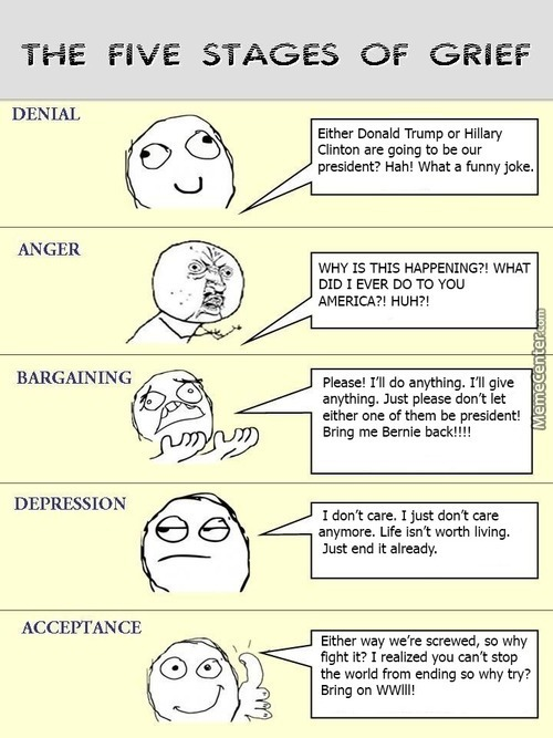The presidential election the five stages of grief