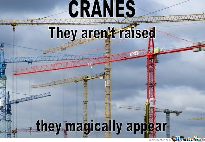 The Secret Of Cranes