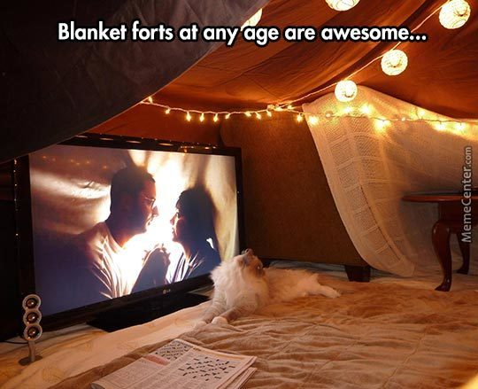 The Truth About Blanket Forts
