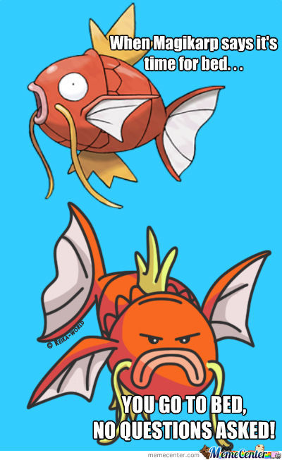 The Wise Magikarp