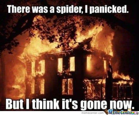 There's Spider