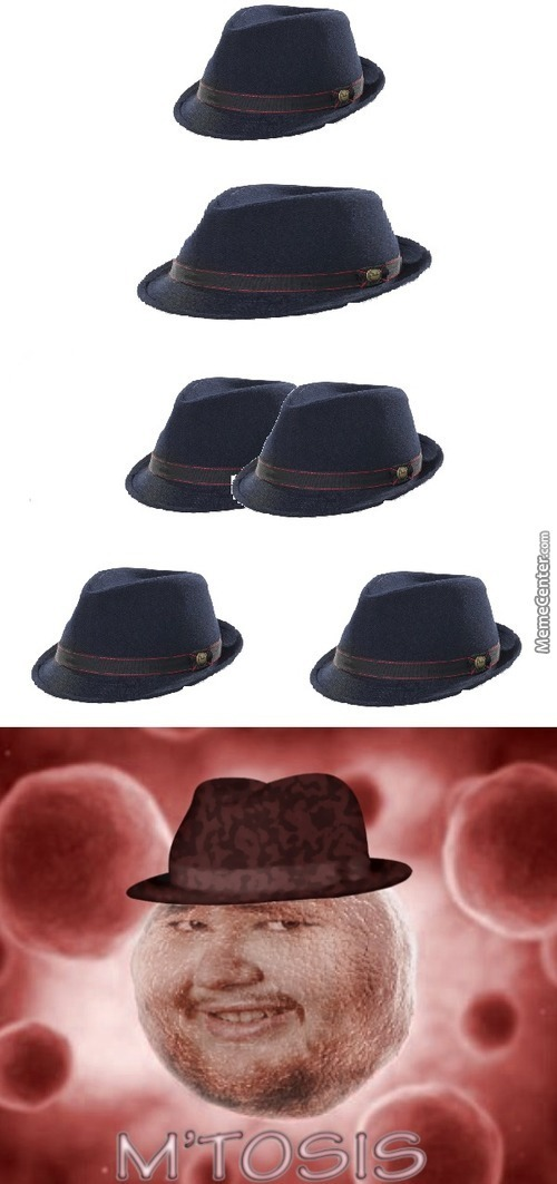 """These Fedoras Reproduce Asexually After They Are Rejected Or """"friendzoned"""" By Beautiful Ladies, Giving It An Autistic Reaction"""