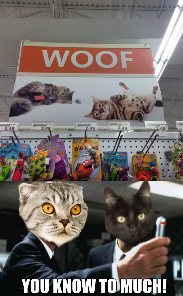 our plan for world domination is complete - world domination cats ...