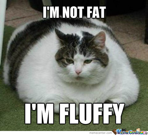 This Kitty Is Fluffy