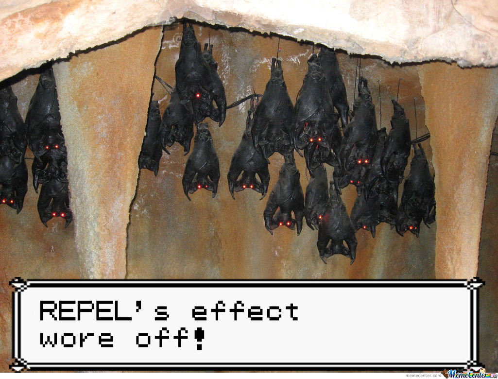 Those Zubats Just Won't Let Go...