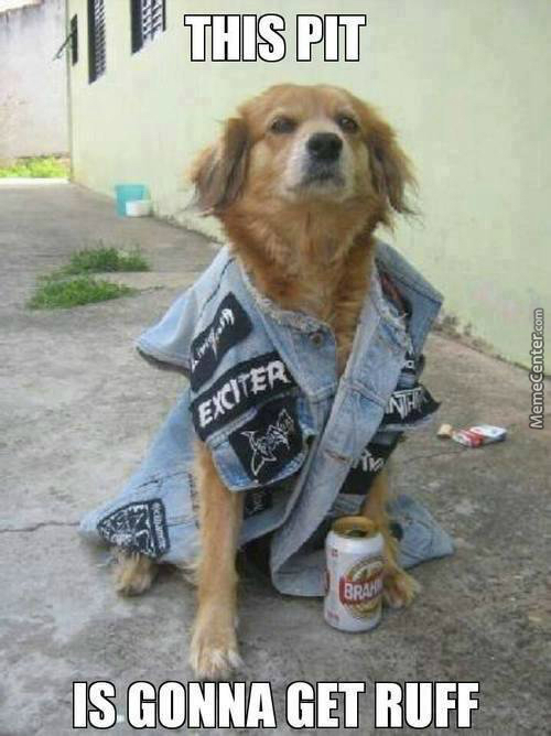 Thrasher The Metal Dog \m/