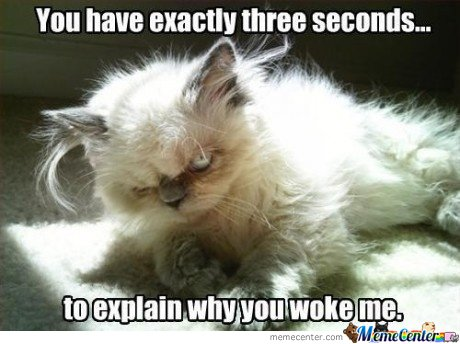 You Have Three Seconds To Explain Why You Woke Me
