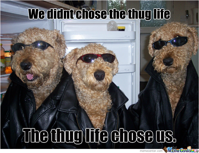 Thug Life, Dog Version