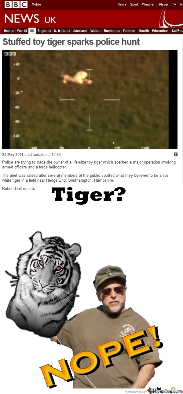 Tiger On The Loose In The U.k