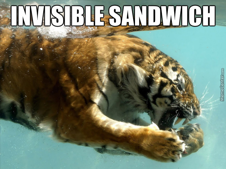 Tigers Do Enjoy Their Sandwiches