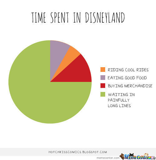 Time Spend In Disneyland