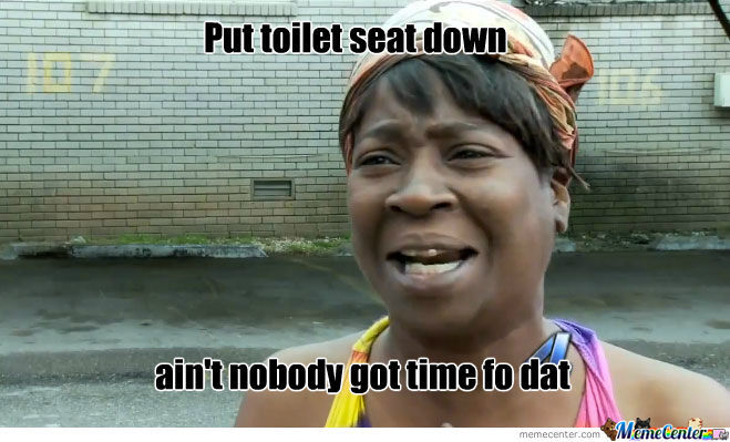 Put toilet seat down ?