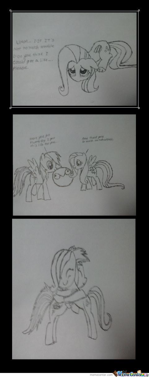 To All My Brony Friends Out There