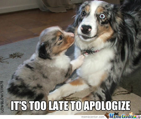 Too Late To Apologize.......