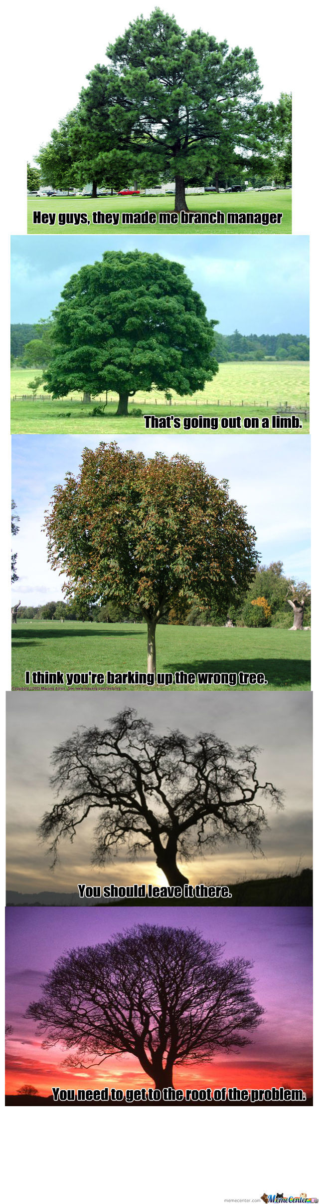 'tree't Us All Alike.