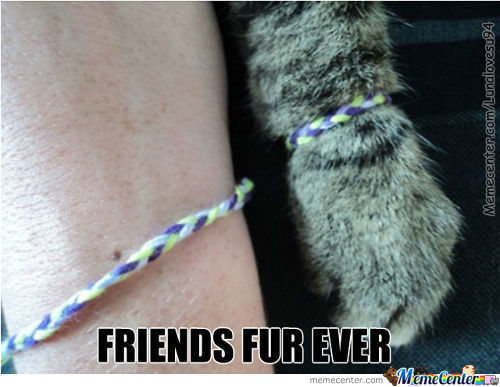 True Friendship :3