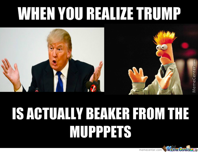 Beaker Muppet Meme Galleryhipcom The Hippest Galleries