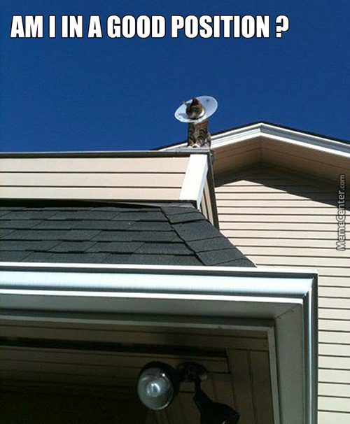 Antenna Memes Best Collection Of Funny Antenna Pictures