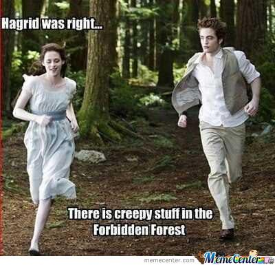 Twilight And Harry Potter