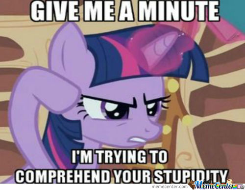 Twilight Sparkle Can't Comprehend This Stupidity Of People