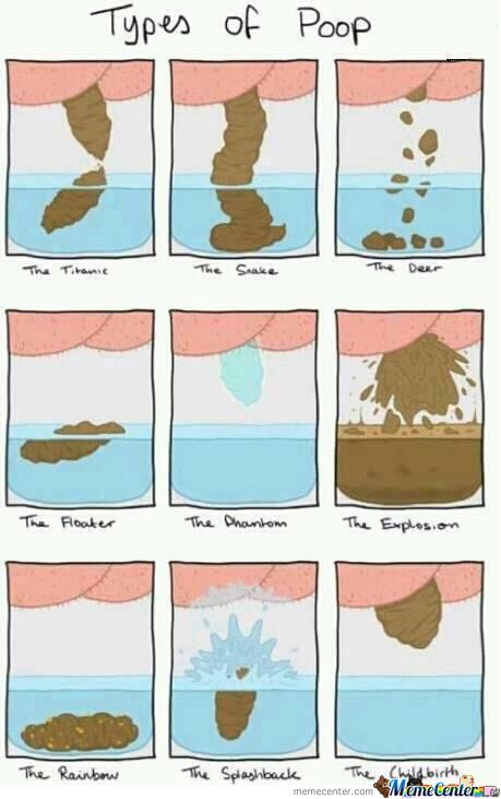 Funny Meme Types : Types of poop by noneoftheabove meme center