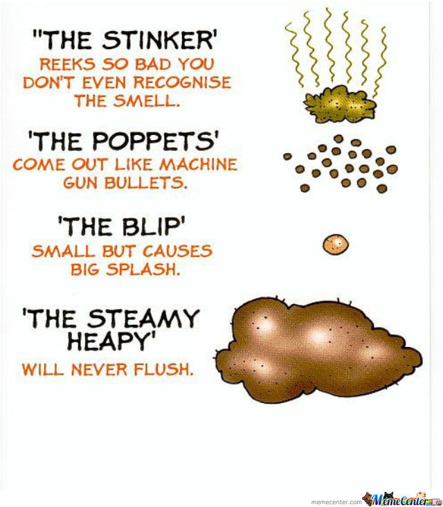 Types Of Shit