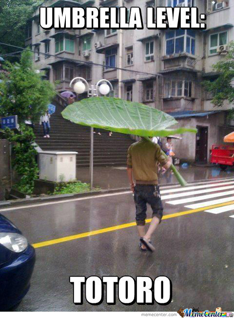 Umbrella Level: Totoro