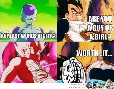 Vegeta: Are U A Guy Or A Girl?