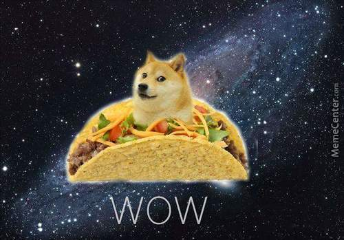 Very Taco. Much Doge