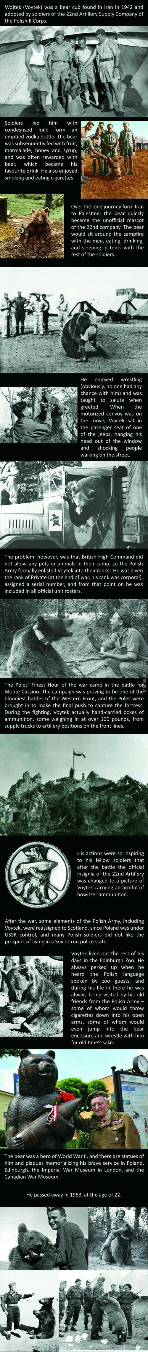 Voytek The Soldier Bear