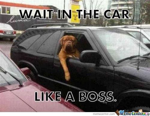 Wait In A Car Like A Boss