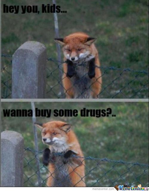 Wanna Buy Some Drugs?