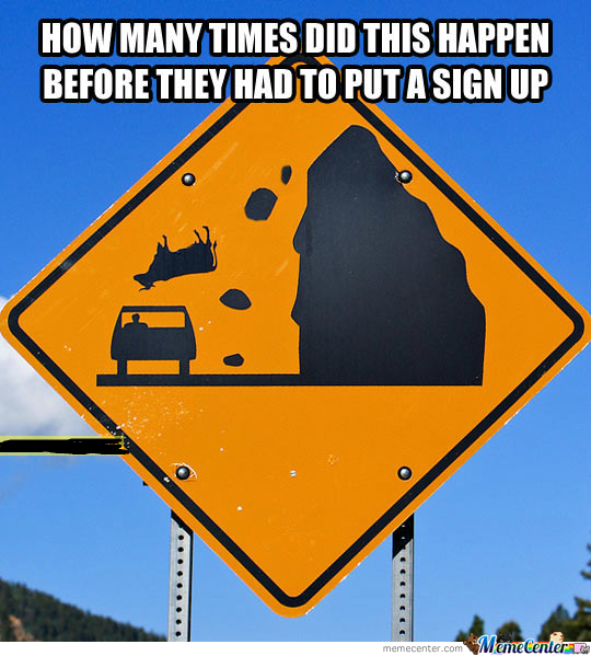 Watch Out For Falling Cows