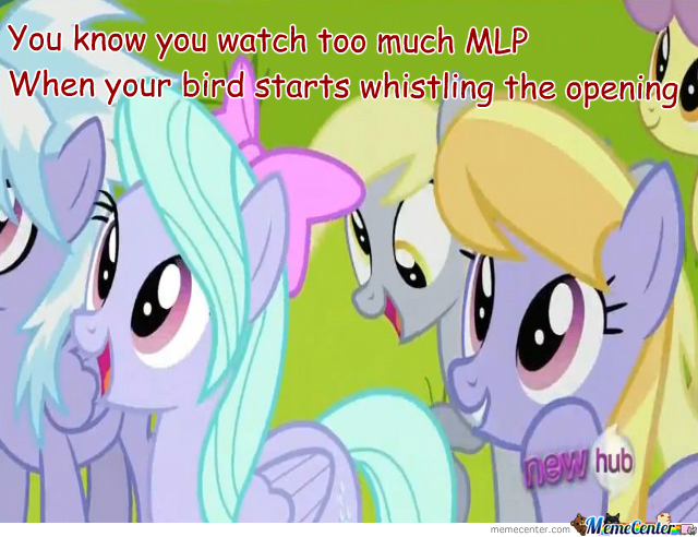 Watch Too Much Mlp When...