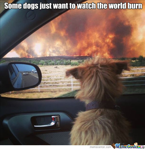 Watchin' The World Burning