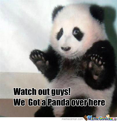 We Got A Panda Over Here
