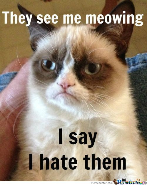 We Know, Grumpy Cat, We Know.