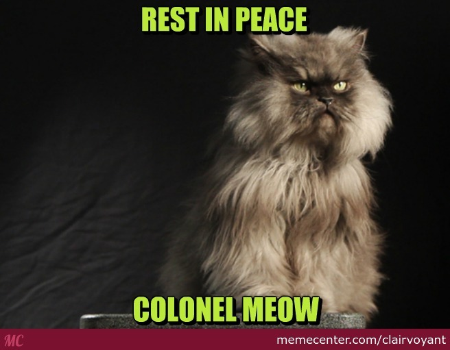 We Miss You Colonel :(