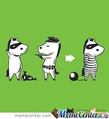 Well This  Explains Why Zebras Have Black And White Strips